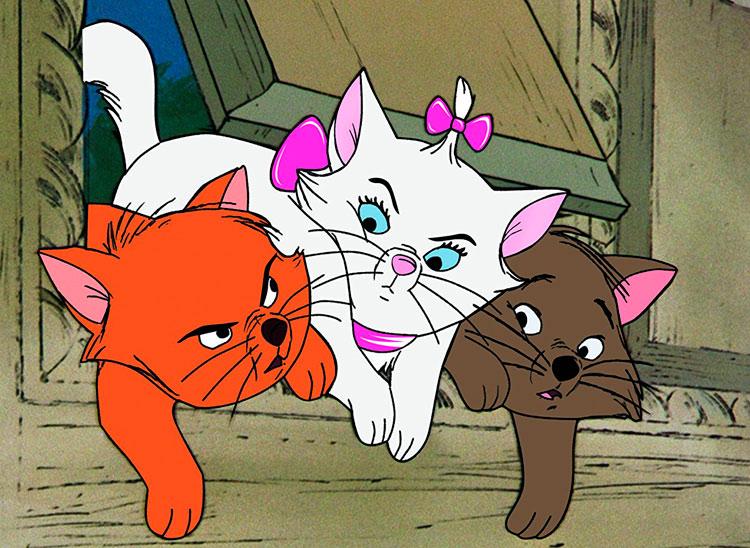 Las mejores películas de gatos