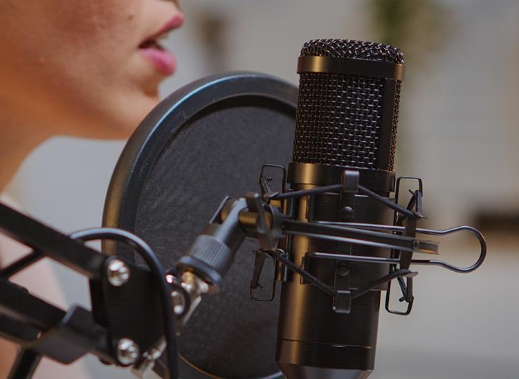 ¿Cómo elaborar un muestrario de voces?