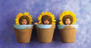 bebés en maceta